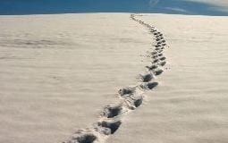Tracking Sand Footprint Image